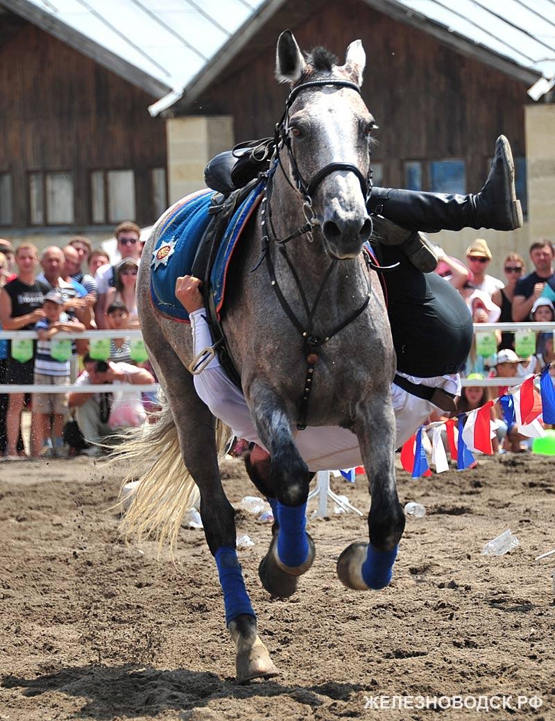 На полном скаку под животом лошади